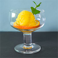 Orangen-Sorbet selber machen